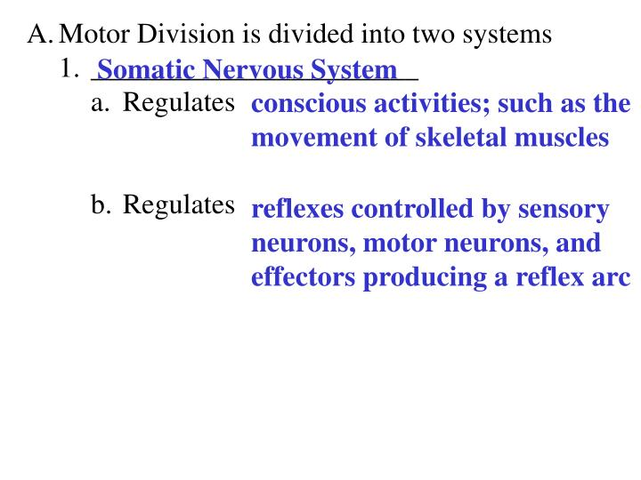 Motor Division is divided into two systems