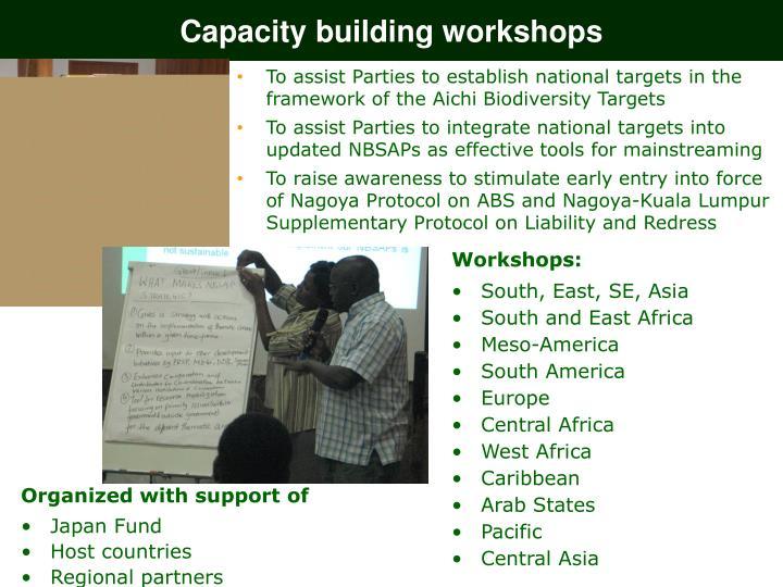 Capacity building workshops