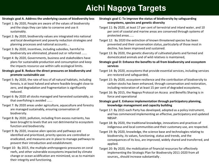 Aichi Nagoya Targets