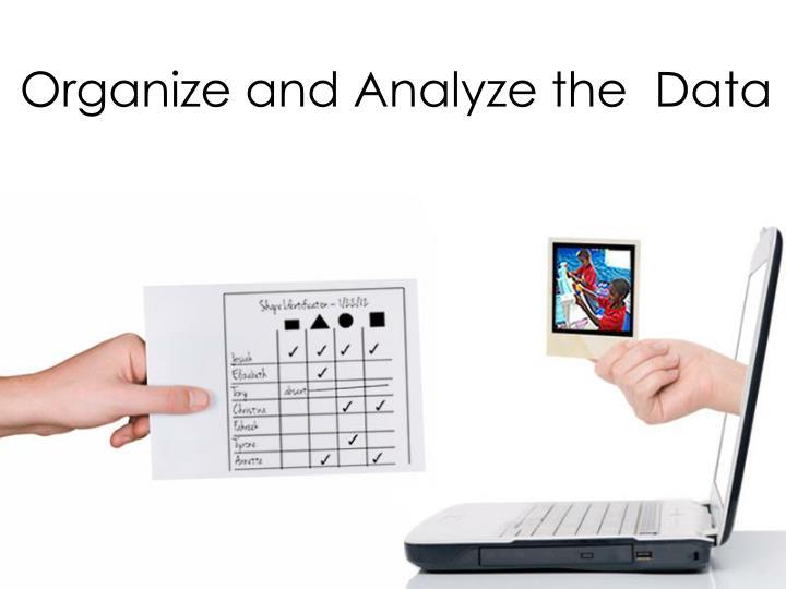 Organize and Analyze the  Data