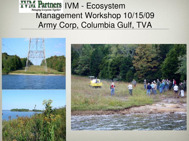 IVM - Ecosystem