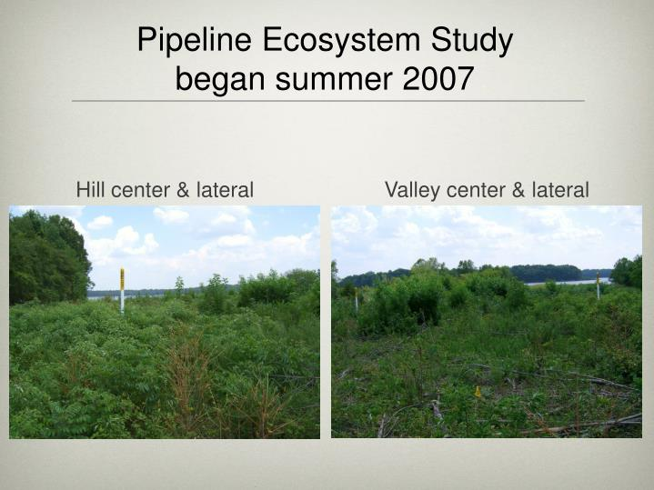 Pipeline Ecosystem Study