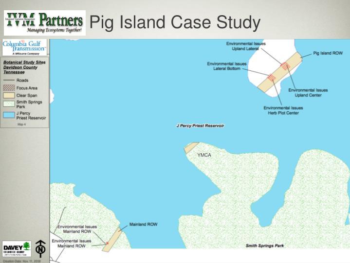 Pig Island Case Study