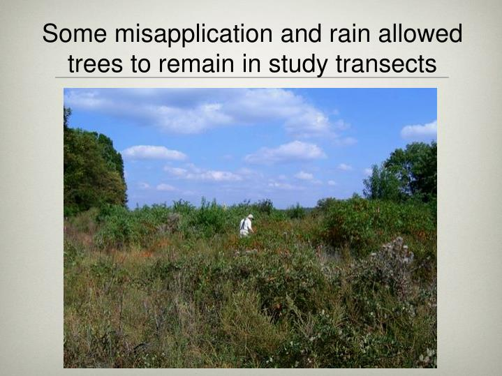 Some misapplication and rain allowed trees to remain in study transects