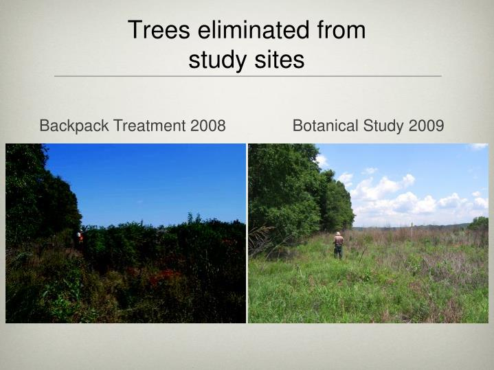 Trees eliminated from