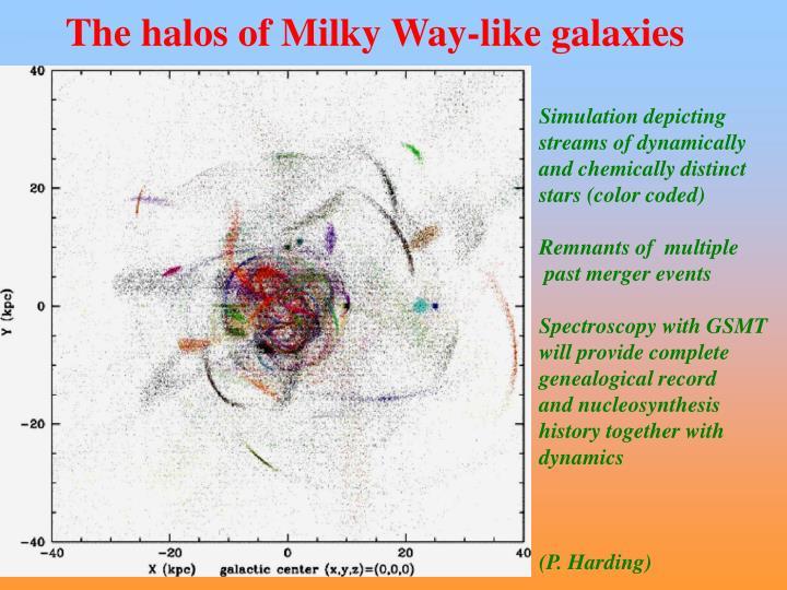 The halos of Milky Way-like galaxies