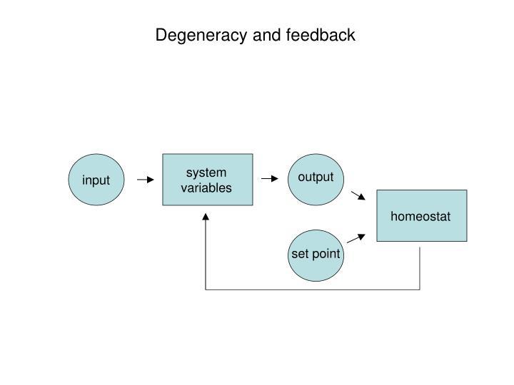 Degeneracy and feedback