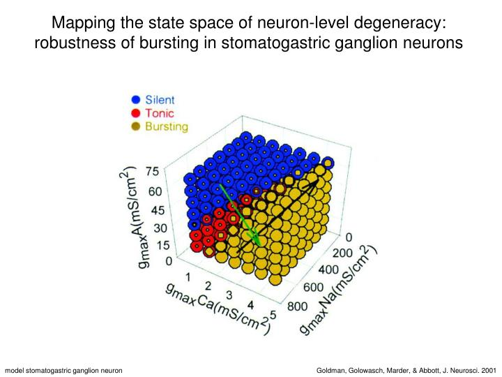 Mapping the state space of neuron-level degeneracy: