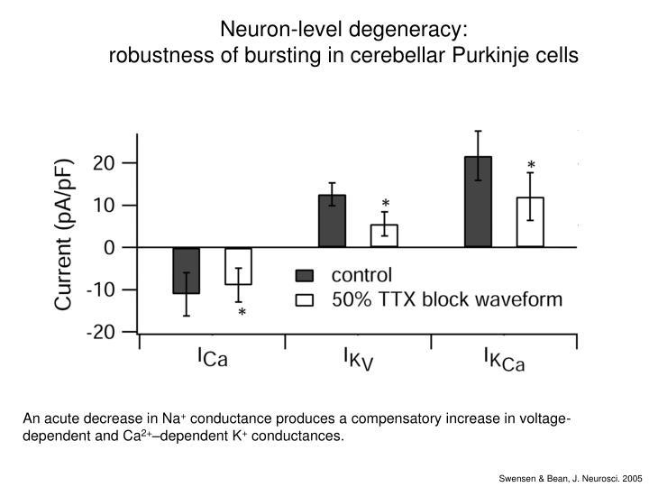 Neuron-level degeneracy: