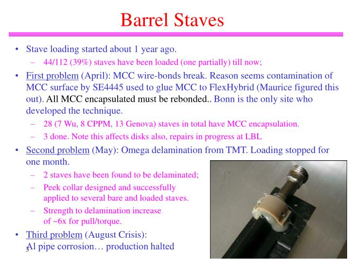 Barrel Staves