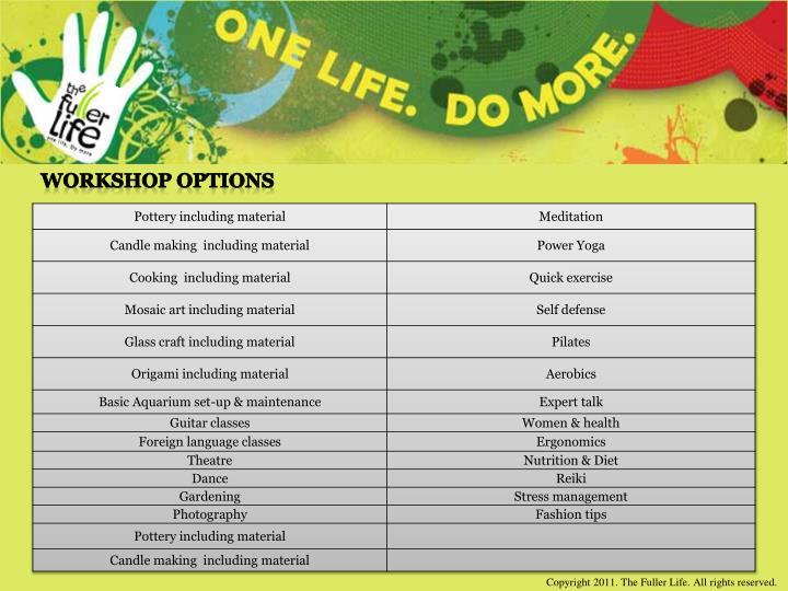 Workshop options