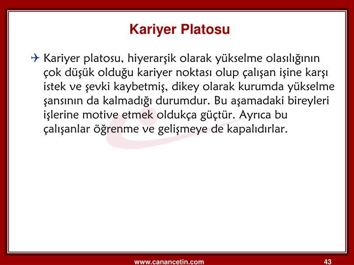 Kariyer Platosu