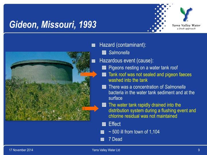 Gideon, Missouri, 1993