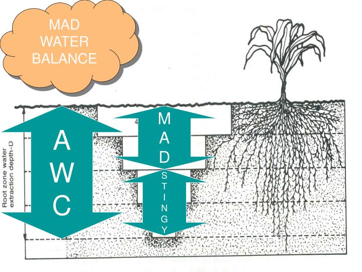 MAD WATER BALANCE