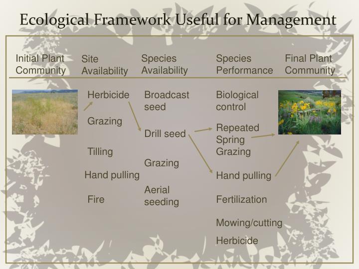 Ecological Framework Useful for Management