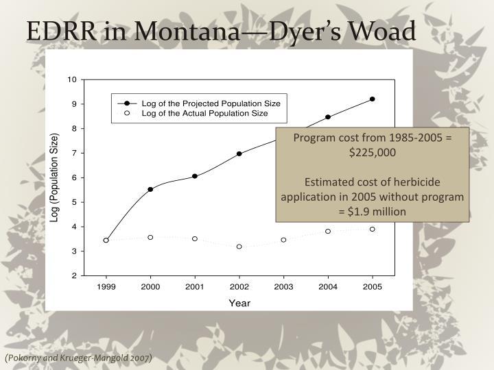 EDRR in Montana—Dyer's
