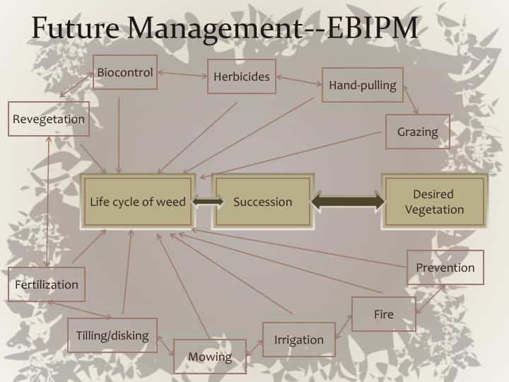 Future Management--EBIPM