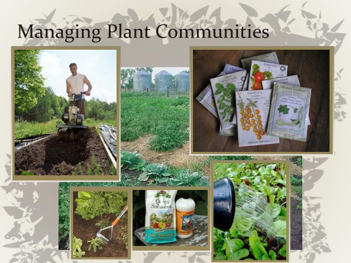 Managing Plant Communities