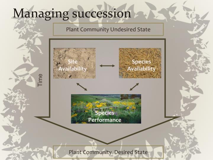 Managing succession