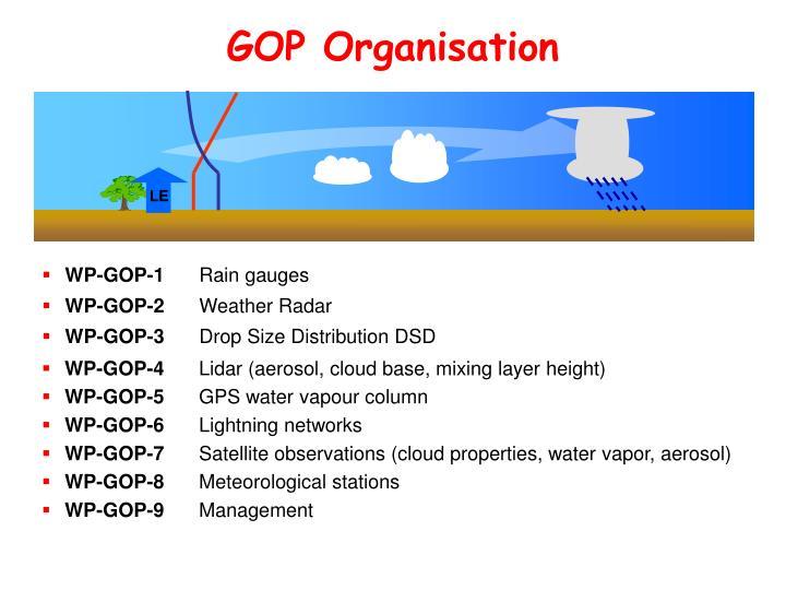 GOP Organisation