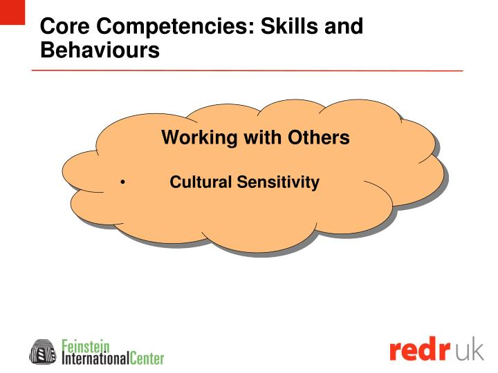 Core Competencies: Skills and Behaviours