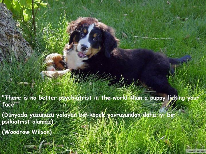 """There is no better psychiatrist in the world than a puppy licking your face"""