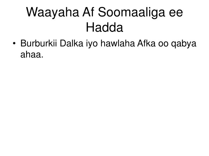 Waayaha Af Soomaaliga ee Hadda