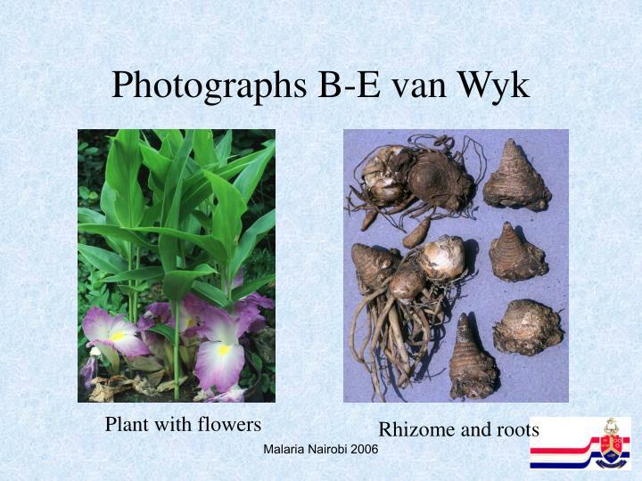 Photographs B-E van Wyk