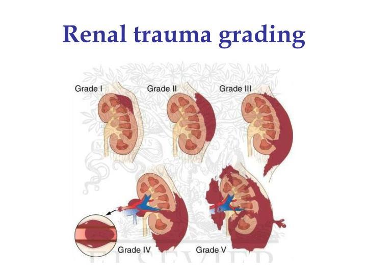 Renal trauma grading