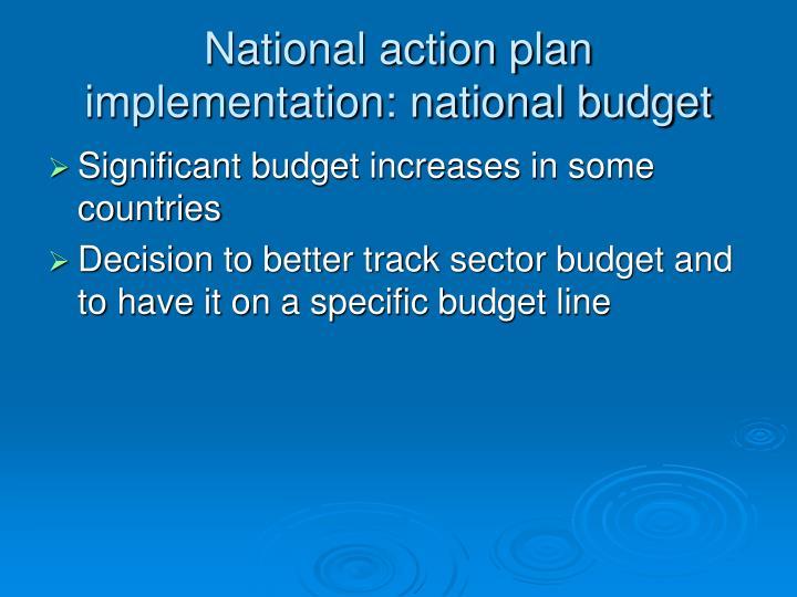 National action plan implementation: national budget