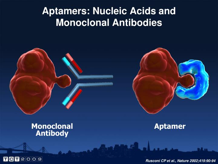 Aptamers: Nucleic Acids and Monoclonal Antibodies