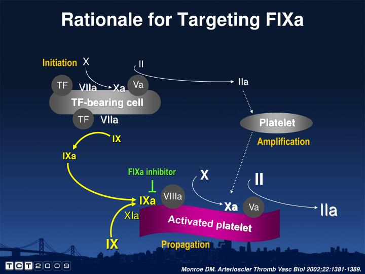 Rationale for Targeting FIXa