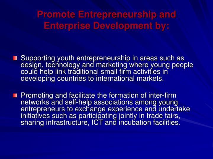 Promote Entrepreneurship and Enterprise Development by: