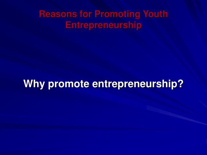 Reasons for Promoting Youth Entrepreneurship