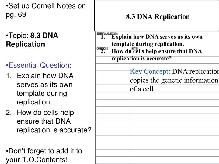 Ppt please complete the two dna sequences below t a c for Explain how dna serves as its own template during replication