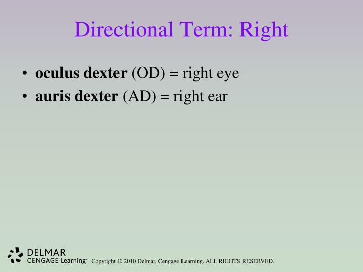 Directional Term: Right