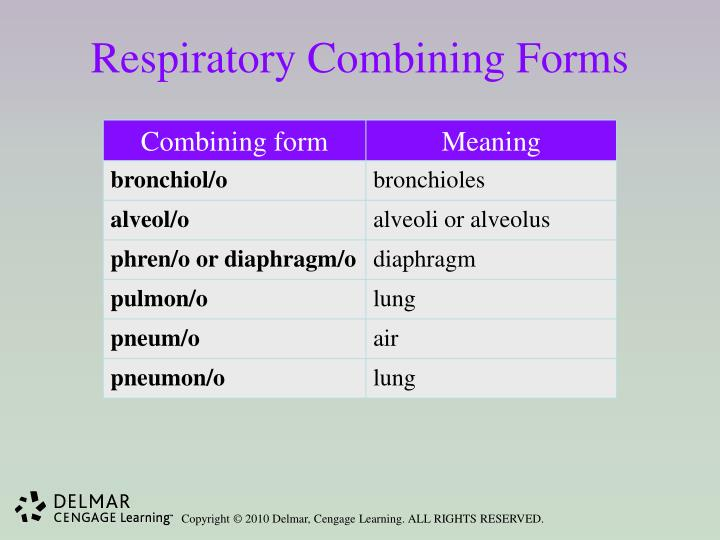 Respiratory Combining Forms