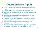 depreciation inputs1