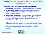 the big question can policies support and nurture or even create a ris