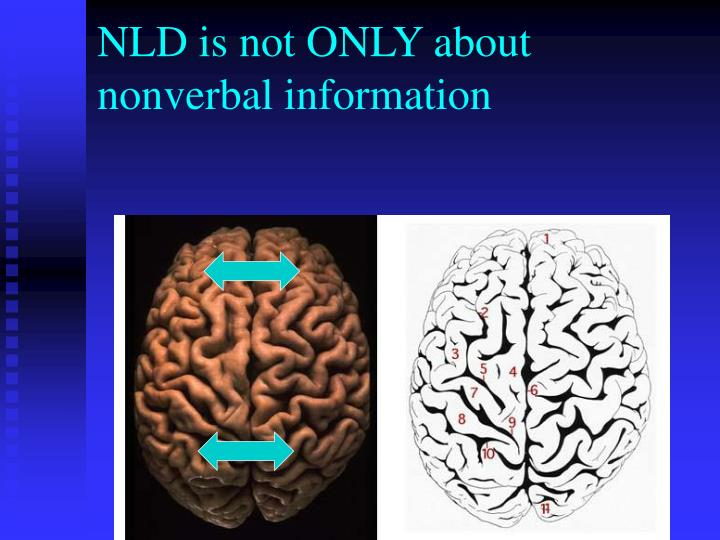 NLD is not ONLY about nonverbal information