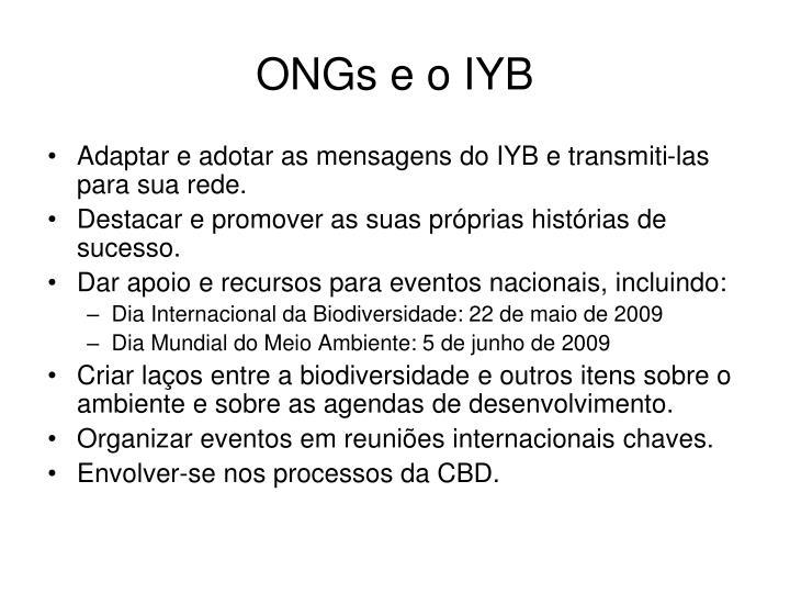 ONGs e o IYB