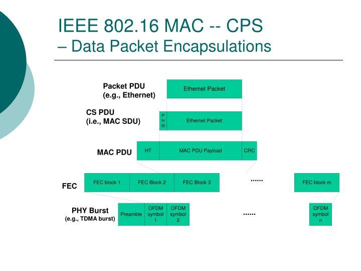 IEEE 802.16 MAC -- CPS