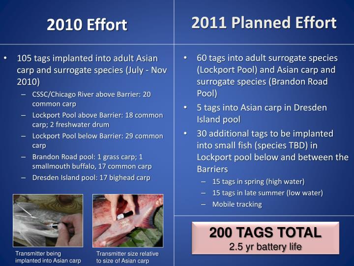 2011 Planned Effort