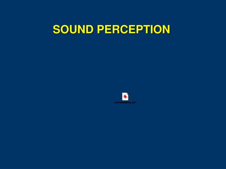 SOUND PERCEPTION