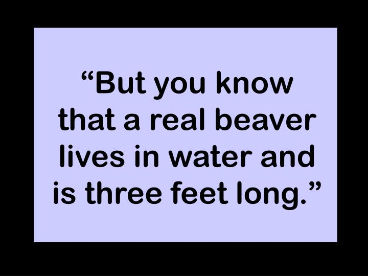 """""""But you know that a real beaver lives in water and is three feet long."""""""