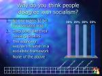 why do you think people disagree with socialism