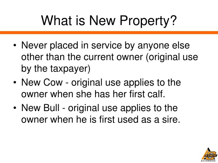 What is New Property?