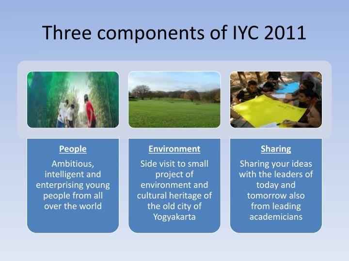 Three components of IYC 2011