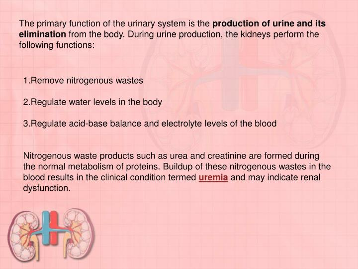 The primary function of the urinary system is the