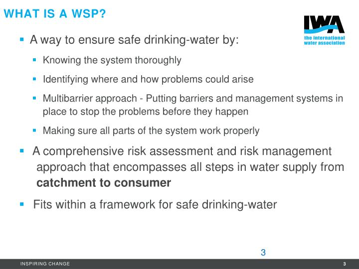What is a WSP?